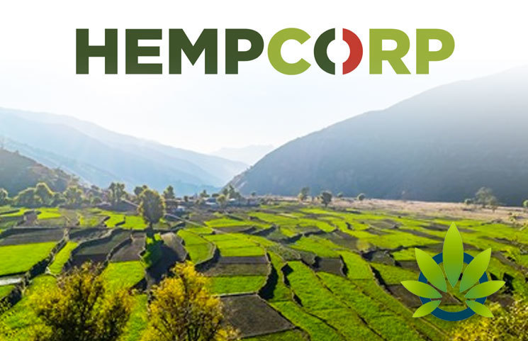 India-Based-HEMPCORP-is-Plotting-Its-Path-of-Success-in-the-CBD-Industry