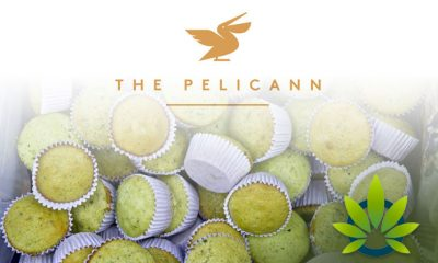 Israeli-based-Cannibble-Launches-USA-Line-of-Cannabis-Infused-Edibles-The-Pelicann