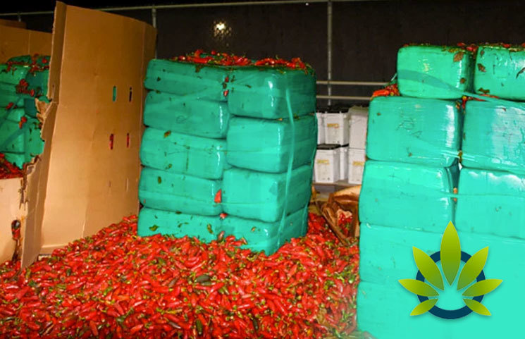 Jalapeno Pepper Shipment Contains Four Tons of Weed Worth $2.3 Million
