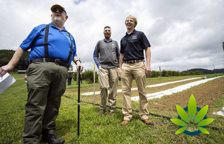 Kentucky's Morehead State University Dives into Hemp Research to Understand Medicinal CBD