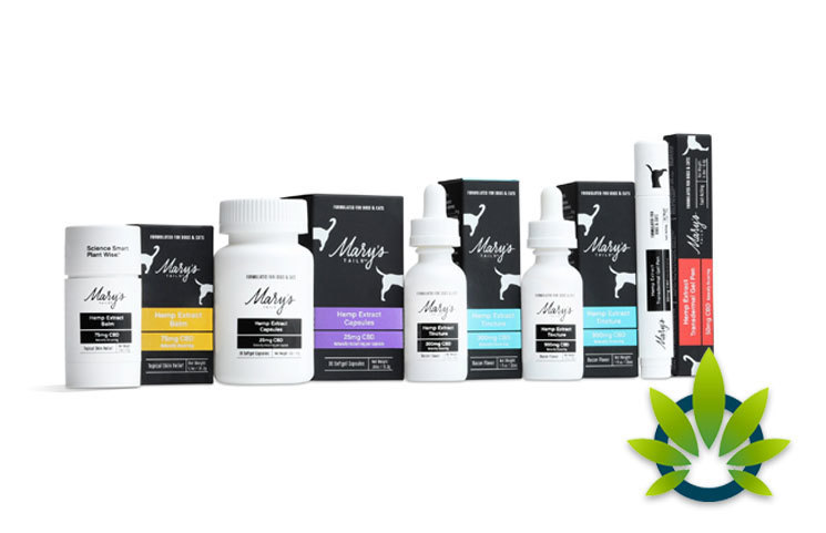 Leading-Hemp-Extract-Manufacturer-Launches-Pet-Product-Line-for-Specialty-Market