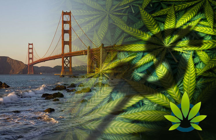 Legal-Cannabis-in-California-Expected-to-Reach-3-1-Billion-in-Sales-This-Year