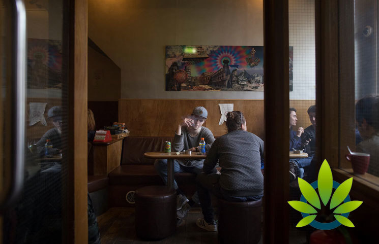 Netherlands Looks to Eliminate Marijuana's Black Market with New Legal Cannabis Cafes