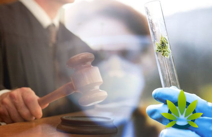 Licensed Marijuana Researcher Sues Federal Government for Subpar Quality Cannabis Access