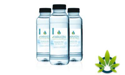 LivElite Awaken Holistic Hemp Water with Pharmaceutical-Grade CBD