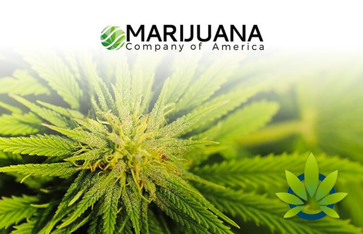 Marijuana Company of America Provides Latest Details on Reverse Stock Split