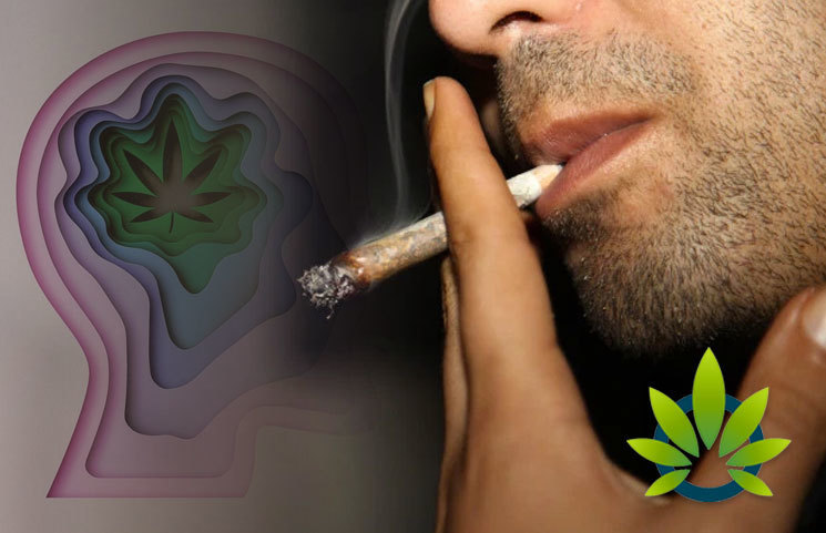 Marijuana Consumption Linked to Mental Health Issues and Mass Shootings?