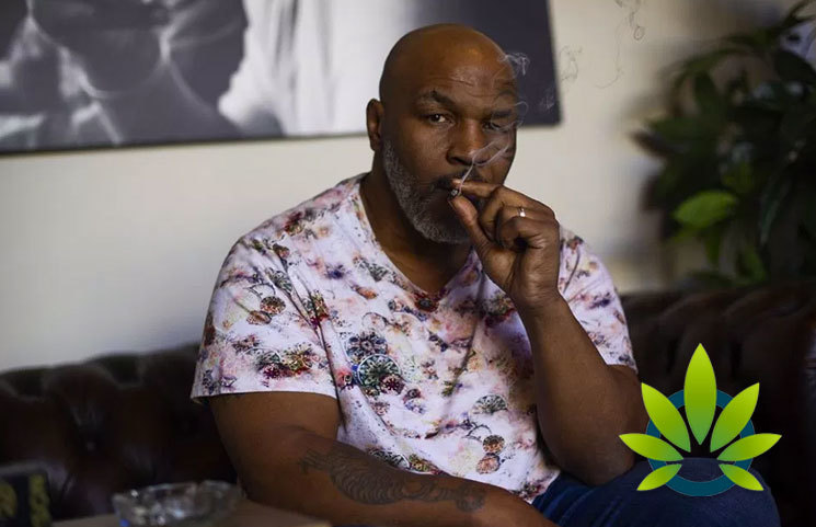 Mike Tyson's The Ranch Companies Releases New DWiiNK CBD Drinks