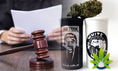 Mr-T-Sues-Leafly-for-Using-Name-and-Likeness-on-New-Mr-Tusk-Product