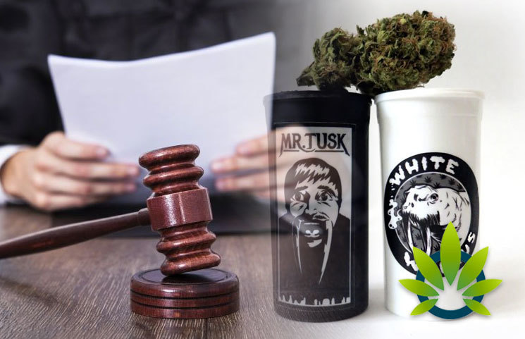 "Mr. T Sues Leafly for Using Name and Likeness on New ""Mr. Tusk&qu"