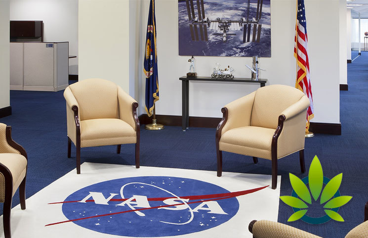 NASA Space Administration Issues Stark Warning on Using CBD and Losing Their Jobs