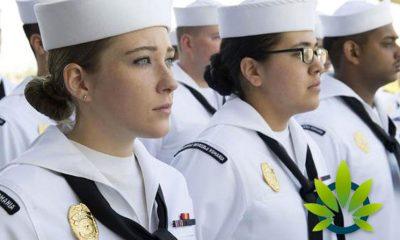 Sailors and Marines Navy Service Members Prohibited to Use CBD Products, Says Navy Secretary