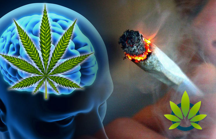 New Association Between Recent Cannabis Use and Acute Ischemic Stroke Study Released