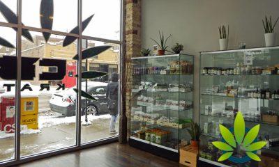 New Chicago CBD & Hemp Shop to Offer Cannabidiol Oil, Vape Cartridges and Skin Creams