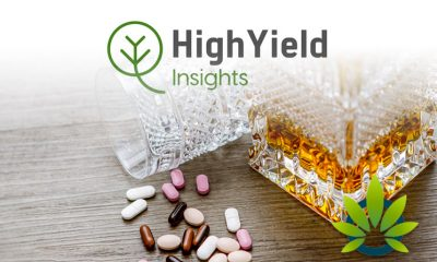 New High Yield Insights (HYI) Study: CBD Users Prefer Medications and Alcohol Less Often