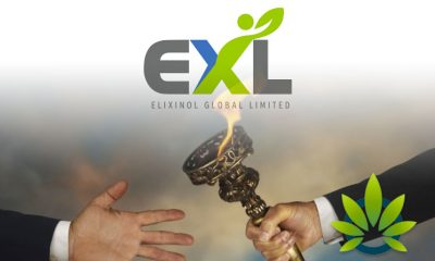 New Leadership at Top CBD Business Elixinol Global to Head International Expansion