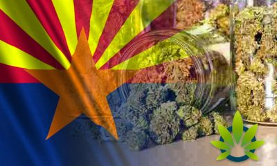 New Smart & Safe Arizona Initiative for Marijuana Legalization May Be On 2020 Ballet