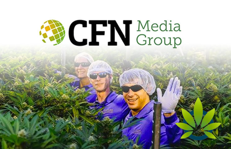 New-Supreme-Cannabis-Company-Report-Published-by-CFN-Media-Group-Regarding-Their-Future