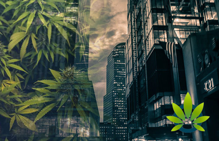 New-York-City-Court-Seals-Cannabis-Cases