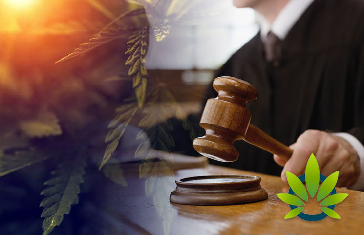 New York State DPA Director Voices Stance on Ending Cannabis Prohibition Properly