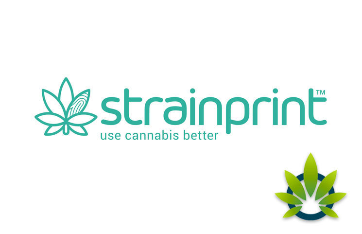Next Phase of CBD Study Launched by Strainprint Technologies and Gynica