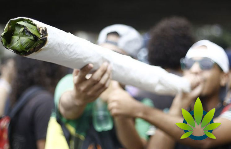 Ontario Cannabis Festival Will Feature Longest Joint-Rolling Competition