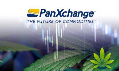 New PanXchange Industrial Hemp Trading Exchange Officially Opens