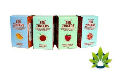 Paracanna Offers Make-Your-Own Cannabis Gummy Kits 'Zen Zingers'