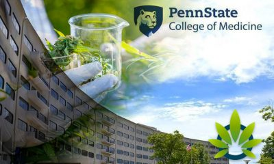 Penn State College of Medicine to Study Medical Cannabis' True Potential