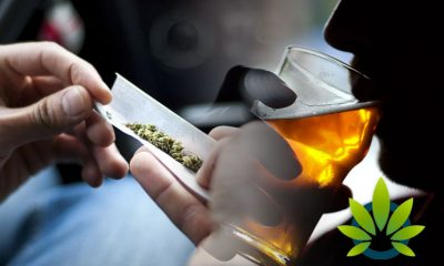 Penn State University Researchers: Combining Marijuana and Alcohol Use Can Lead to Risky Actions