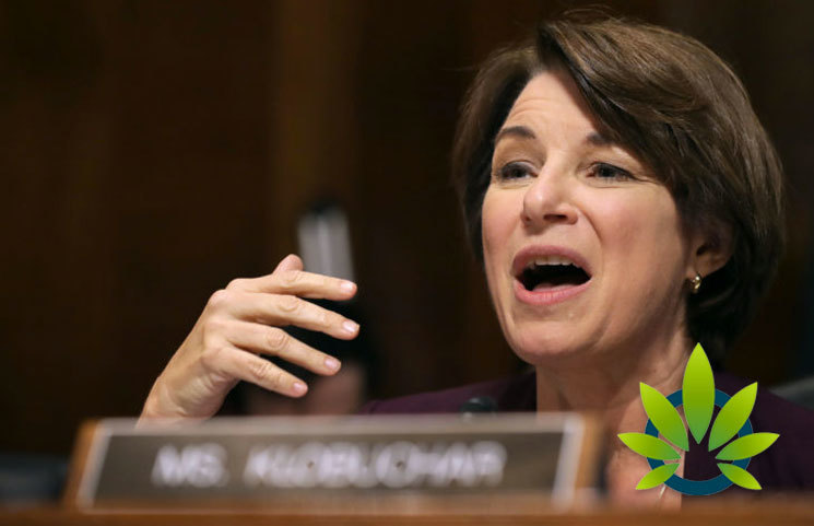 A Look at Presidential Candidate Amy Klobuchar on Marijuana