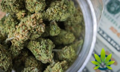 States with Legalized Marijuana See Prices of Wholesale Cannabis Increase