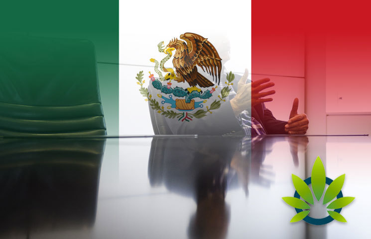 Public-Meetings-in-Mexico-Will-Soon-Discuss-the-Legalization-and-Regulation-of-Marijuana