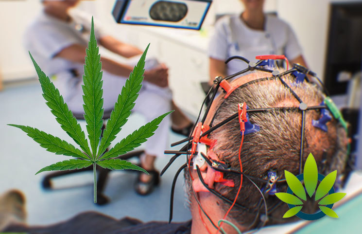 Rare Form of Epilepsy Treatable with Cannabis, But Authorities Warn Against Its Use in Upcoming BBC Documentary
