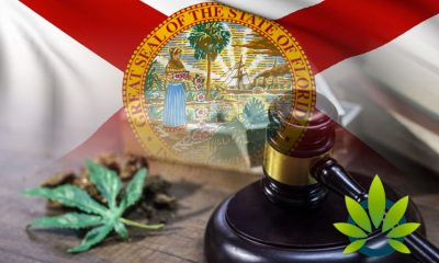 Recreational-Marijuana-May-Soon-Be-Legalized-in-Florida-Possibly-as-Soon-as-2020
