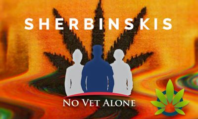 SHERBINSKIS and No Vet Alone Joins Forces to Save Lives via CBD and Cannabis Use Amidst the Opioid Sweeping