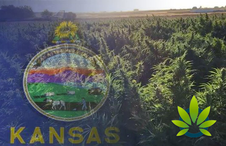 Free State Collective CBD Store Finds Out the Hard Way, Sale of Hemp in Kansas Not Permitted