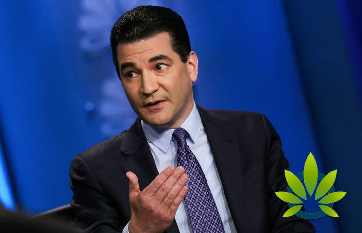 Scott Gottlieb Comments on CBD for Pets, Claims Benefits Only Come From THC's High