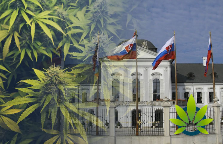Slovak-Government-Introduces-a-Draft-Law-That-Softens-CBD-Regulation
