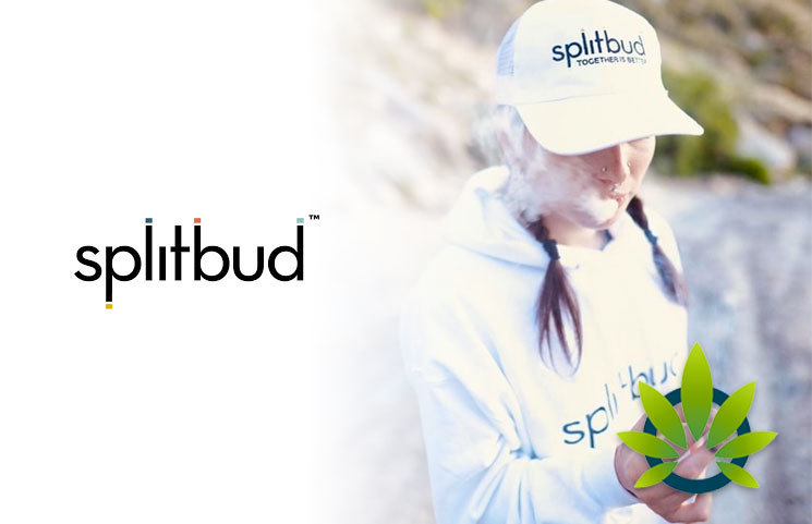 Splitbud Officially Makes an Entrance into the Marijuana Space to Fight Inaccessible Cannabis in the US