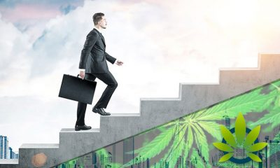 Statistics Canada Releases Data on Employment Growth in the Cannabis Industry, Along with Use