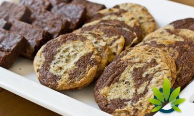 THC and CBD Edibles are Becoming More Popular in Greater Society, Especially Once Fully Legal