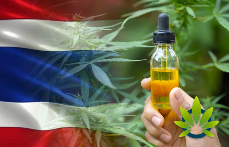 Thailand Is Preparing to Deliver 10,000 Bottles of Newly Made Cannabis Oil to Qualified Patients