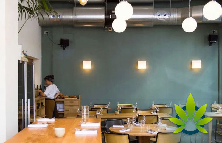 The Hemp Room Café in Upper Craigs Set to Open as Scotland's First CBD-Infused Food Store