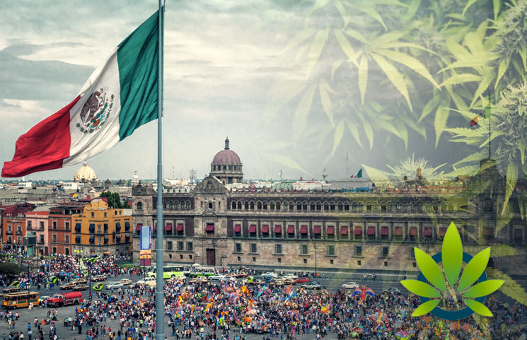 The-Ministry-of-Health-in-Mexico-Has-180-Business-Days-to-Officially-Release-Medical-Marijuana-Regulations