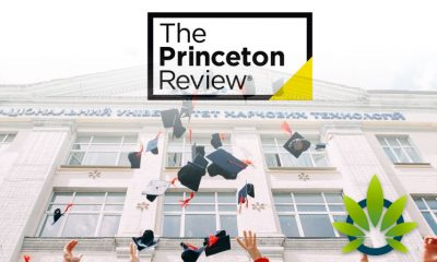 The Princeton Review Ranks Colleges Based on Highest and Lowest Cannabis Use
