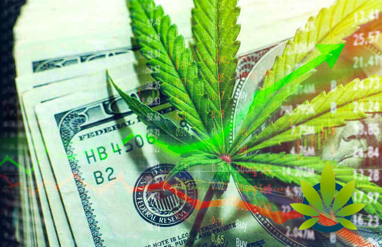 The Uncertainty of the Cannabis Regulation Implies Being A Conservative Investor