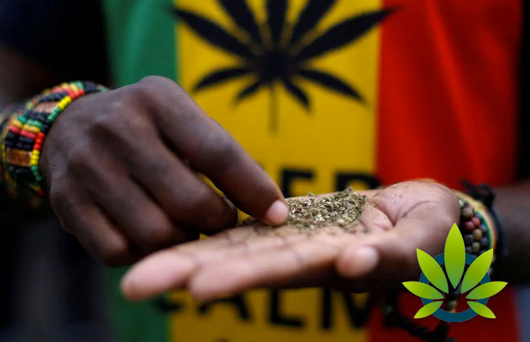The-Value-of-Cannabis-to-the-South-African-Economy
