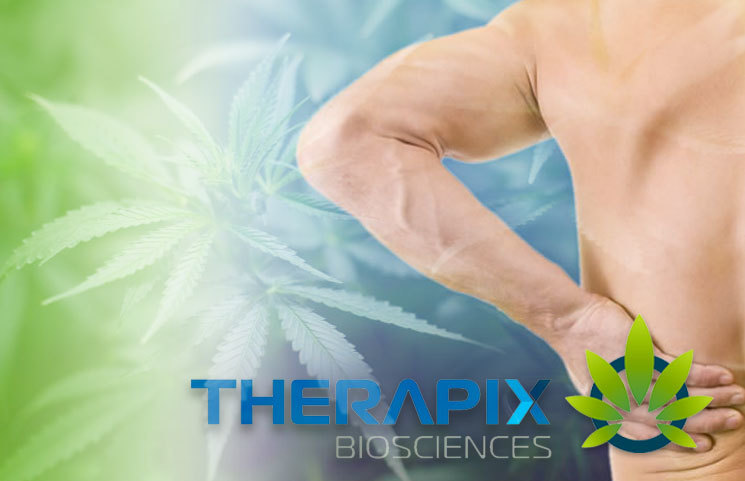 Therapix Announces Product License for CannAmide, a Non-Opiate Pain Relief