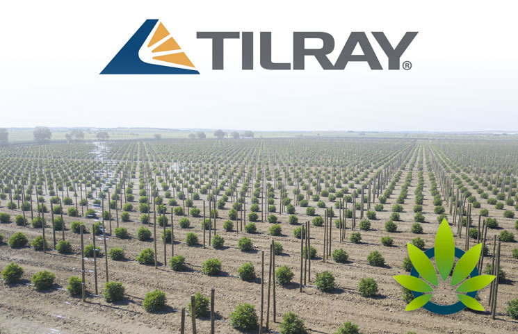 Tilray (TLRY) Pushes to Expand Internationally by Renting Space for Outdoor Cultivation in Portugal